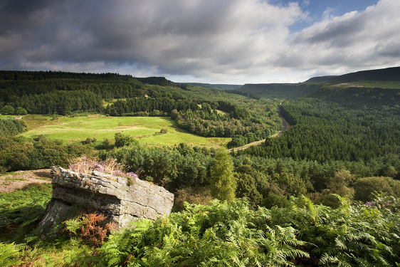 View of Yorkshire Dales - Wayside Park & Lakes
