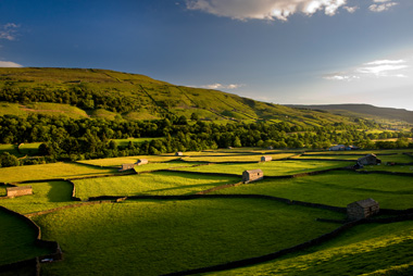 Fields in Yorkshire Dales - Wayside Park & Lakes