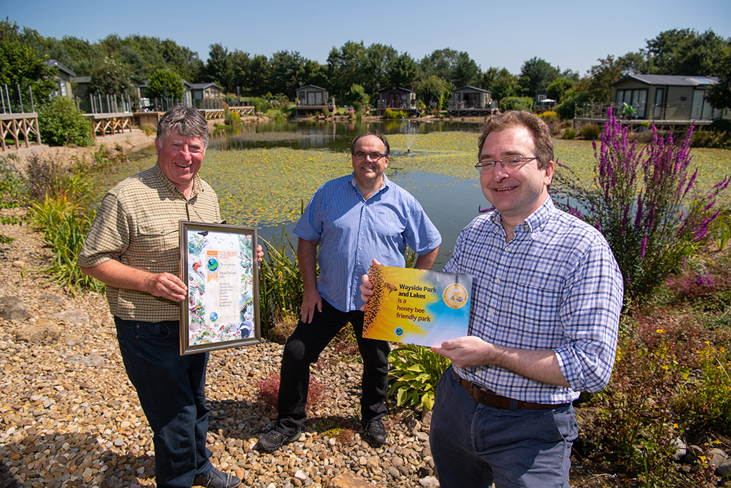David Bellamy Gold Conservation Award - Wayside Park & Lakes